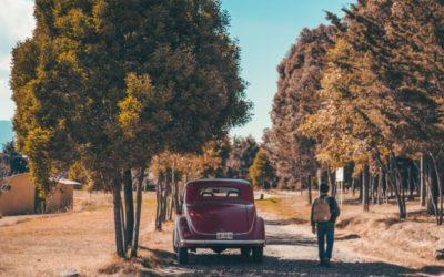 Ferietips 2019: Tolv reisebloggere deler sine beste tips